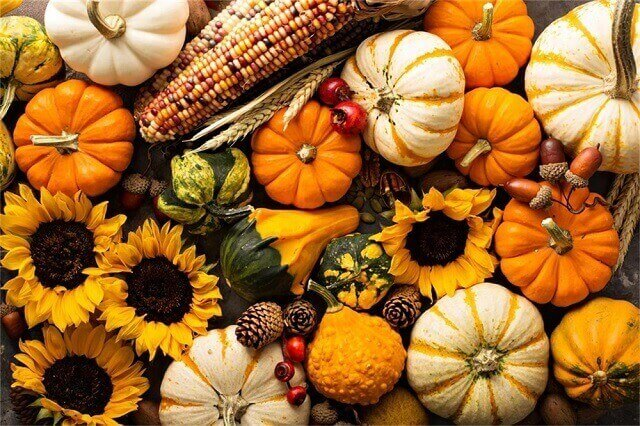 Best autumn foods that boost the immune system