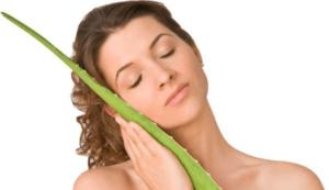 Aloe vera for skin benefits